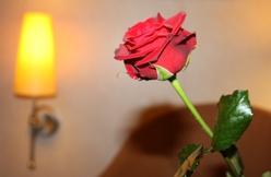 Liebeswochenende ganz romantisch
